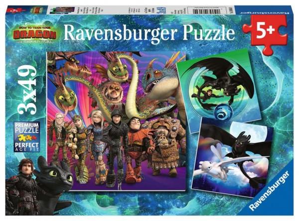 Ravensburger 08 064 9 Drachenzähmen leicht gemacht