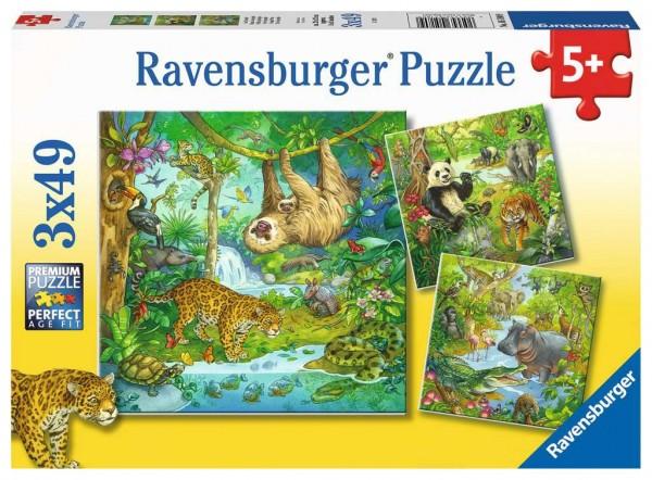 Ravensburger 05180 Im Urwald
