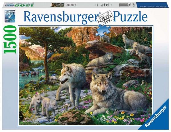 Ravensburger 16598 Wolfsrudel im Frühlingserwachen