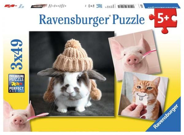 Ravensburger 08 028 1 Witzige Tierportraits